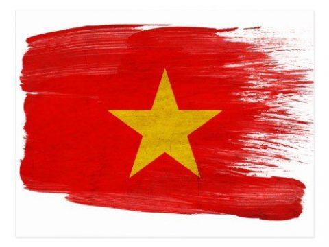 logo tai vietnam