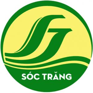 thiết kế logo tinh soc trang